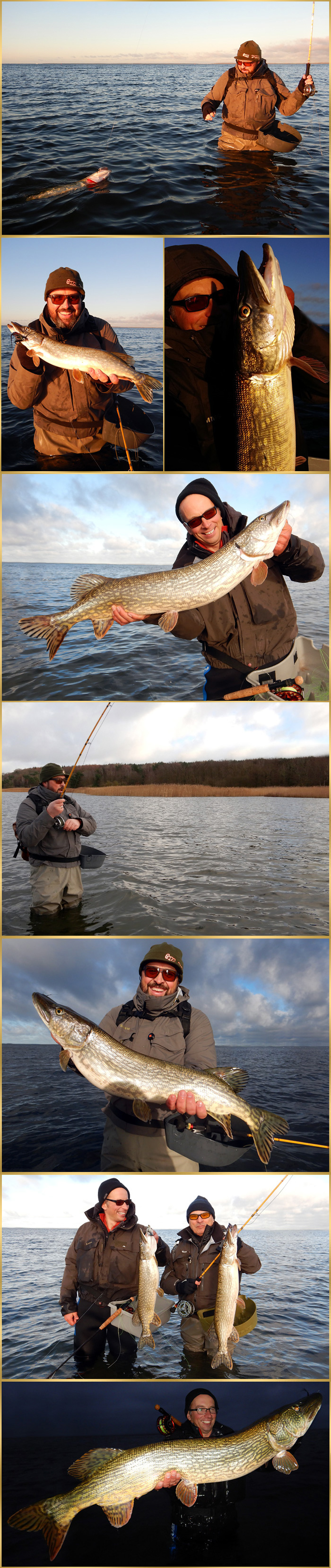 record-pike