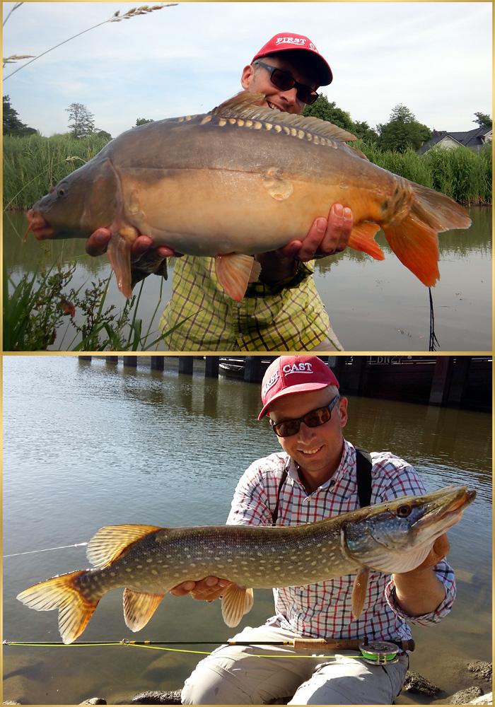pike carp