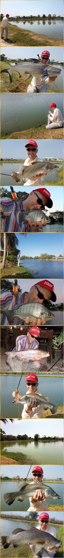 Flyfishing Thailand
