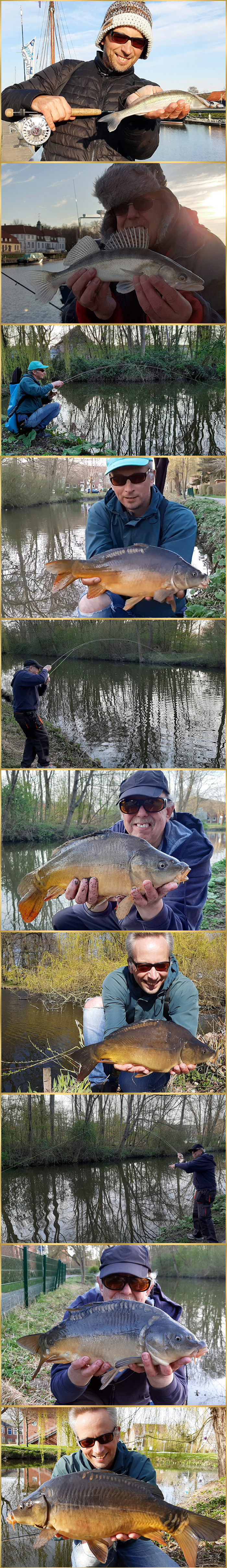 flyfishing on carp